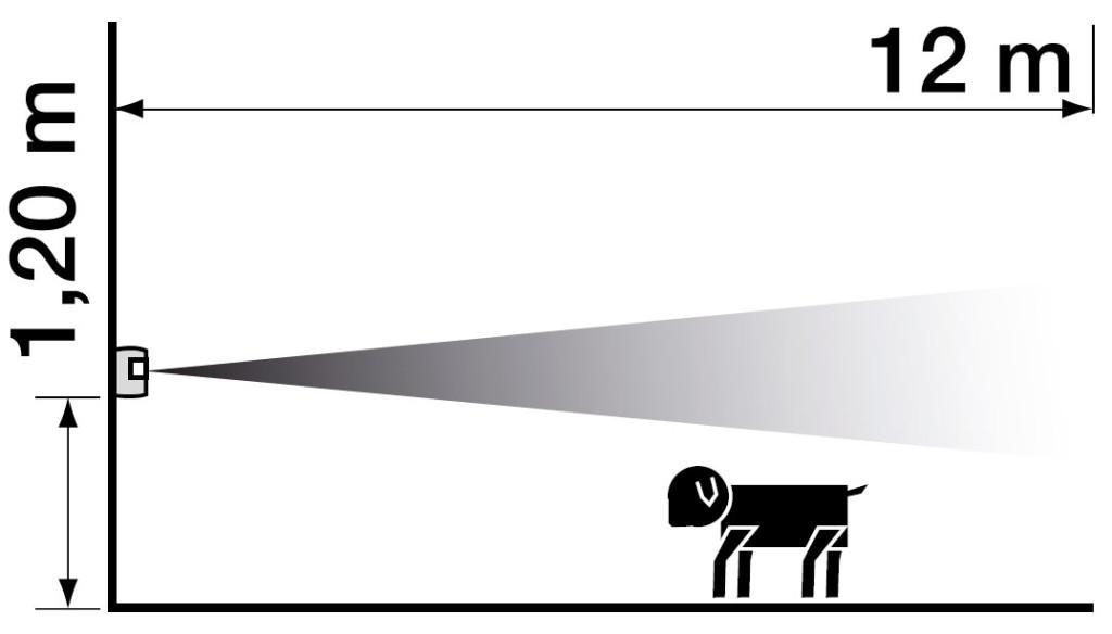 Somfy Bewegungsmelder Hund Beispiel
